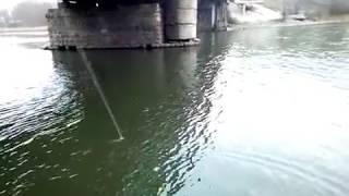 Рыбалка в сызрани на волге