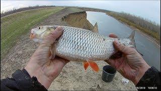 Рыбалка на реке урала