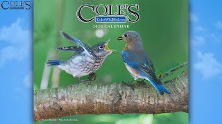 Cole's Live Stream - 2020 Calendar Reveal With All Winners
