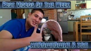 Лучшие Видео Недели (Не вошедшие в ТОП) || Best Videos Of The Week || September 2th 2013
