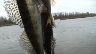 Зимняя рыбалка на дону в волгоградской области