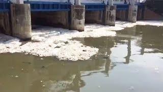Masuki Musim Penghujan, Debit Busa di Kanal Banjir Timur Alami Penurunan