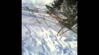 Спуск по горе на лыжах
