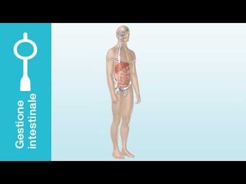 Trattamento di varicosity di vene in Ufa