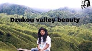 preview picture of video 'Dzukou valley'
