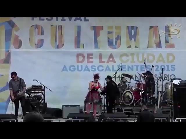 Colectiva Histeria Femenina / Manimal (Ags)