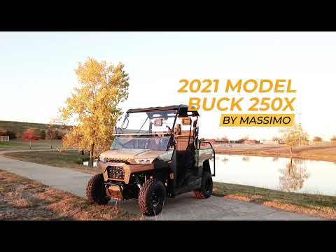 2021 Massimo Buck 250X Golf in Mio, Michigan - Video 1