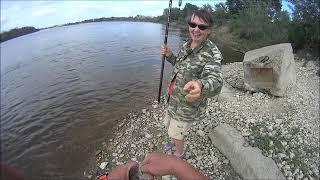 Ловля крупного голавля на поплавочную удочку