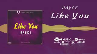 Rayce - Like You [Official Audio]