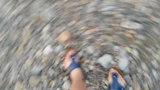 Deniz Kabuğu Arayışı