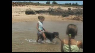 preview picture of video '#28  Holiday Road in Dampier wa'