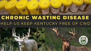 Watch Video - Chronic Wasting Disease - Help Us Keep KY Free Of CWD