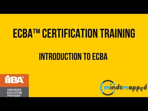 Entry Certificate in Business Analysis™ (ECBA™) Certification ...