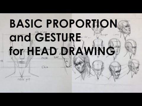 Basic Proportion and Gesture for Head Drawing.