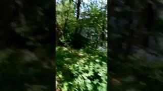 Bieg Run Choszczno