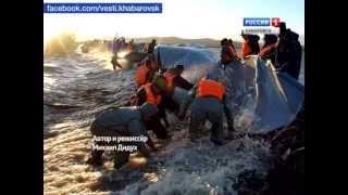 Наводнение в комсомольске на амуре 2013