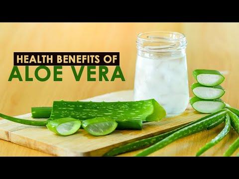 Health Benefits of Aloe Vera   Healthfolks.com