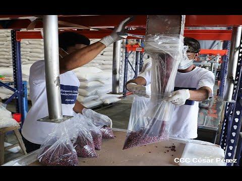 Estrictas medidas de bioseguridad en preparación de alimentos enviados a zonas afectadas por huracanes