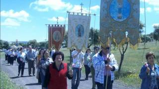 preview picture of video 'Romeria Virgen de la Blanca 2010 Villar del Pozo'