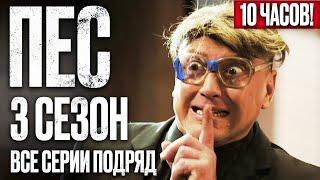 Сериал ПЕС - ПОЛНЫЙ 3 сезон - ВСЕ СЕРИИ ПОДРЯД (1-12) - ЧАСТЬ 1 | Сериалы ICTV