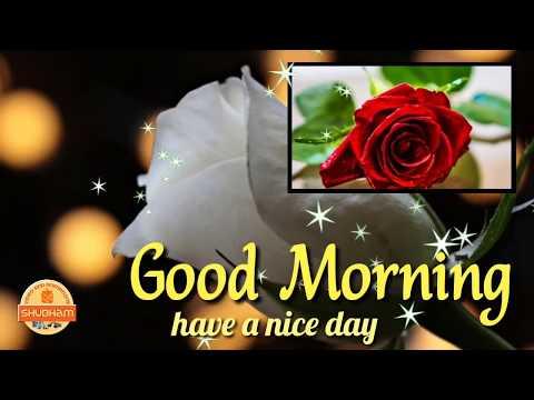 Whatsapp Good Morning Status, Video, Download, Song, Love