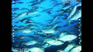 ZENBØ - 魚仔 FISH REMIX (Official Audio)