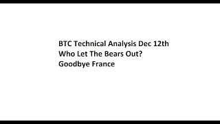 BTC Technical Analysis Dec 12th - Who Let The Bears Out? Goodbye France