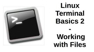 Linux Terminal Basics 2 | Working with Files