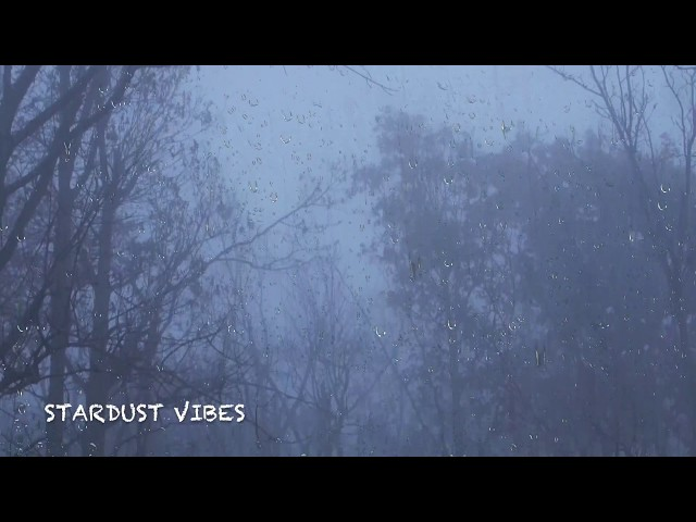 Rain & Thunder Sounds in the Foggy Forest   Thunderstorm Sounds for Sleep, Insomnia & Relaxing