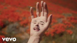 LoveLeo - HEAD OVER HEELS (official music video)