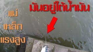 ไม่อยากจะเชื่อ!! ว่าจะเจอสิ่งนี้? มันอยู่ใต้น้ำ มันใหญ่ มันหนักมาก แม่เหล็กแรงสูง[1080P 60FPS] EP.8