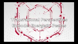Transrational Perspectives Episode 4: Energetic Peaces