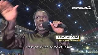THE LION OF JUDAH IS ROARING videos,THE LION OF JUDAH IS