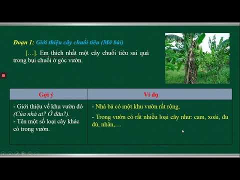 TẬP LÀM VĂN LỚP 4 - LUYỆN TẬP XÂY DỰNG ĐOẠN VĂN MIÊU TẢ CÂY CỐI