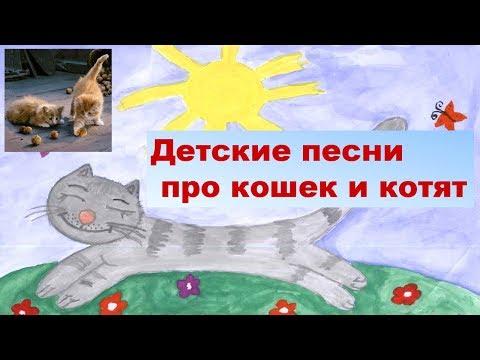 Детские песни про кошек и котят
