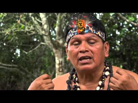 Pueblos Indigenas construyendo futuro Pando Parte IV