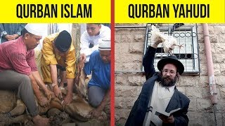 5 Fakta Tentang Qurban Yang Jarang Diketahui