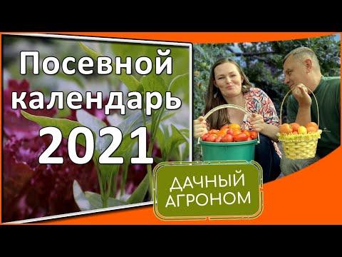 Спланируй идеальный 2021 Календарь садовода-огородника Что и когда сеять