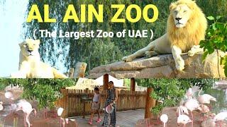 Al Ain Zoo (In HD) II Abu Dhabi II UAE II Complete Tour (A Day inside Zoo) #alainzoo #animal  #uae