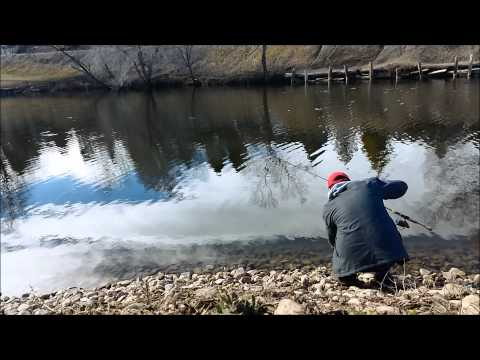 Powerbait Fishing For Trout at Salem Pond