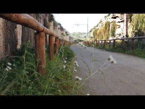 Siracusa pista ciclabile intitolata a Rossana Maiorca.