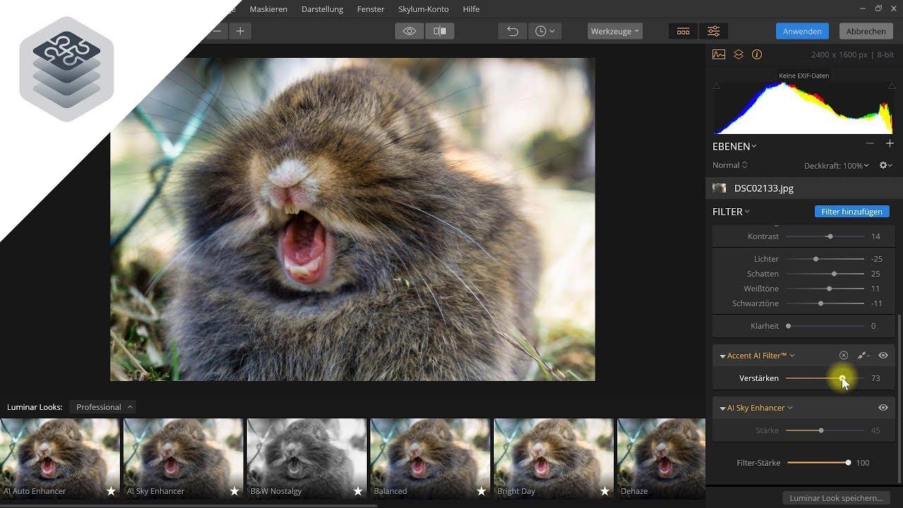 Luminar als Plug-in für Photoshop und Lightroom – Luminar Flex Vorstellung
