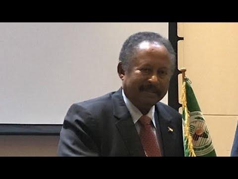 Sudan slashes troop numbers in Yemen - PM