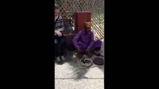 Snake charmer in Agra