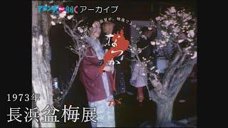 1973年の長浜盆梅展【なつかしが】