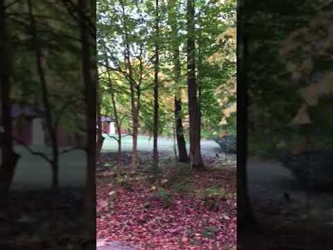 Video Of Soft Maple Campground, NY