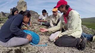 Bering Land Bridge National Preserve BioBlitz 2017