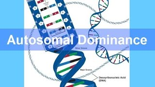 Autosomal Dominance Inheritance (updated)