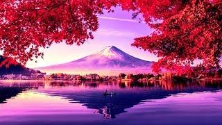 528Hz Reiki Music for Self Healing ➤ Cleanse Negativity - Spiritual Meditation for Angelic Harmony