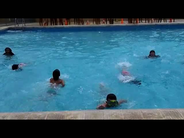 Proves de natació.